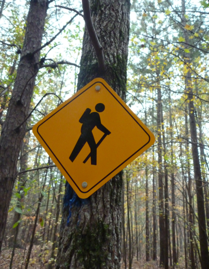Backcountry Information for the High Peaks Region  NYS